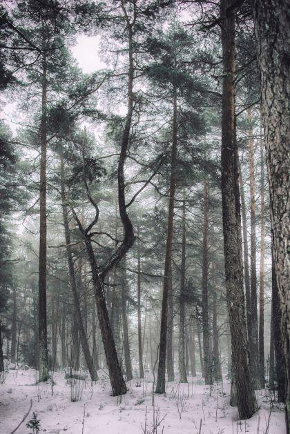 Vuosaari, Finland